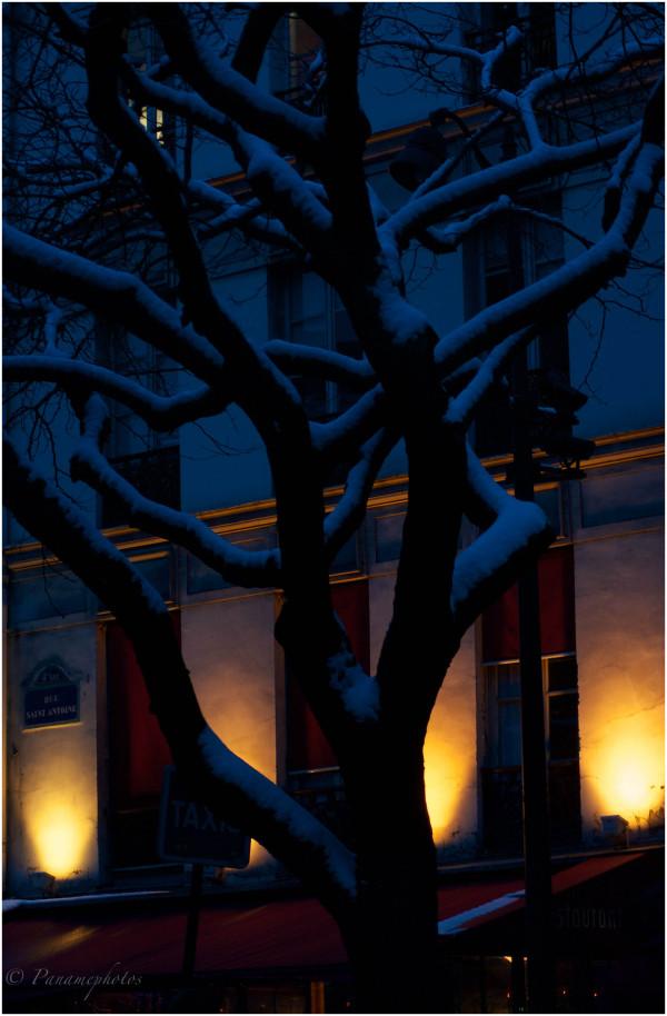 La neige de St Antoine