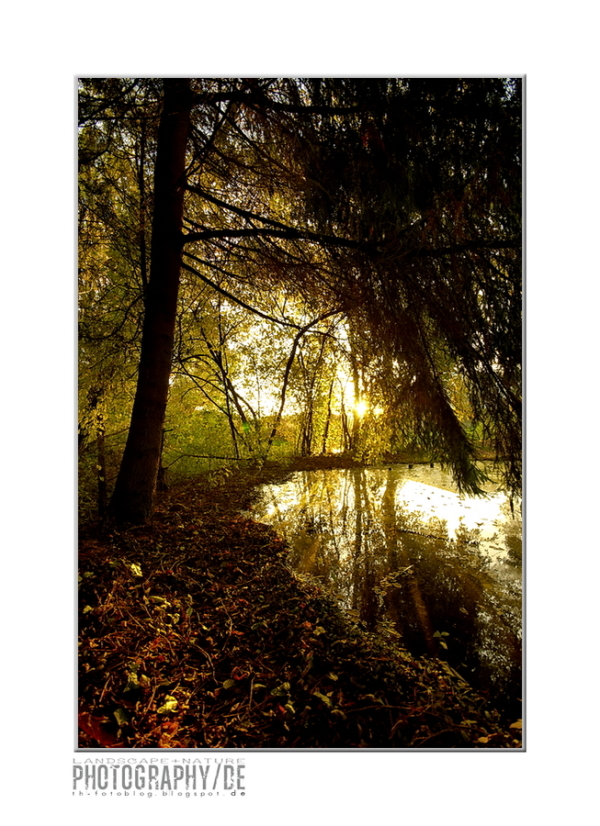Autumn impressions from Franconia VII