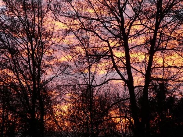 sun dawn behind my house