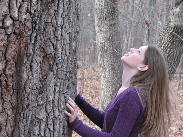 Tree, hug, nature, fall