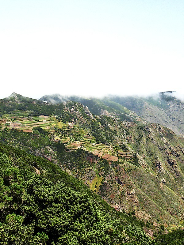 Anaga hill Tenerife Canaries island
