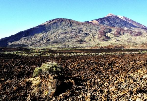 Terre aride