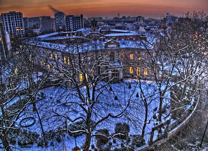 snow in park, neige dans jardin hdr