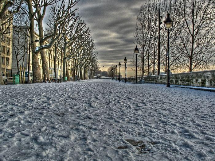 Paris ,snow,neige,arbre,tree,street,rue