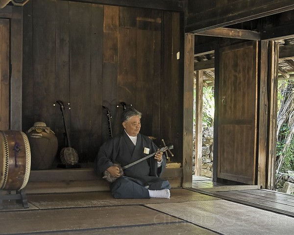 environmental portrait, sanshin, okinawa