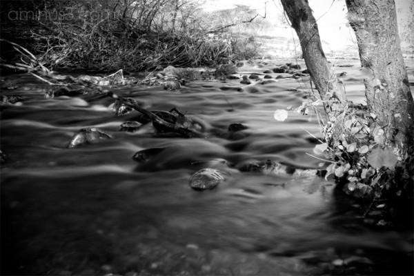 WATER agua guadalajara
