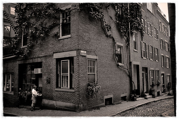 acorn street ii