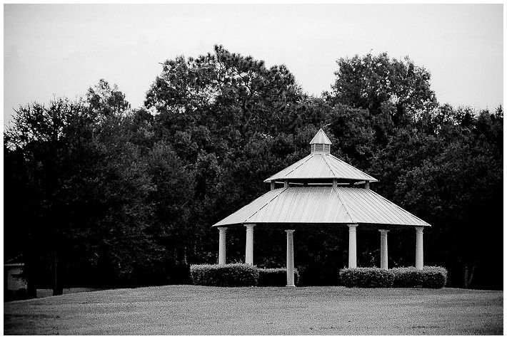 hampstead park iv