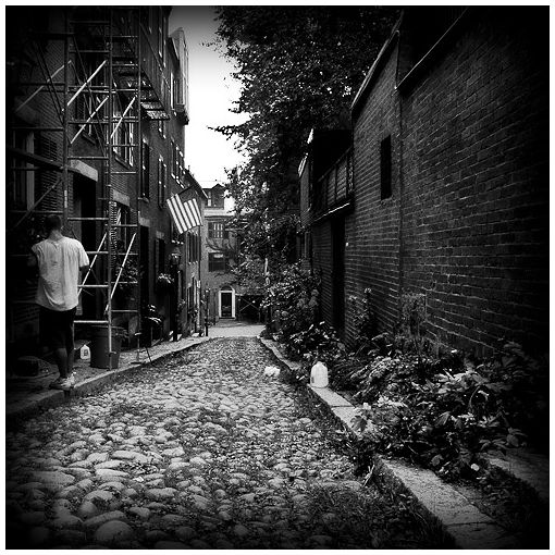 miscellaneous acorn street