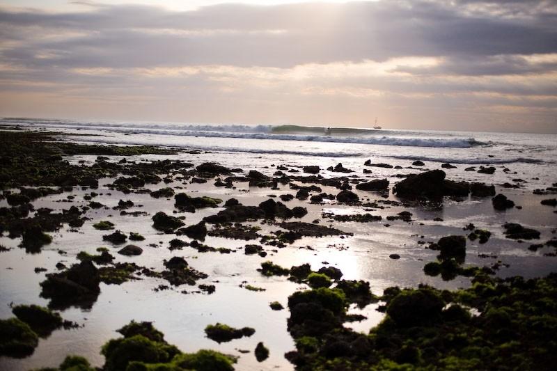 beach landscape sunset sea ocean seaweed shore sur