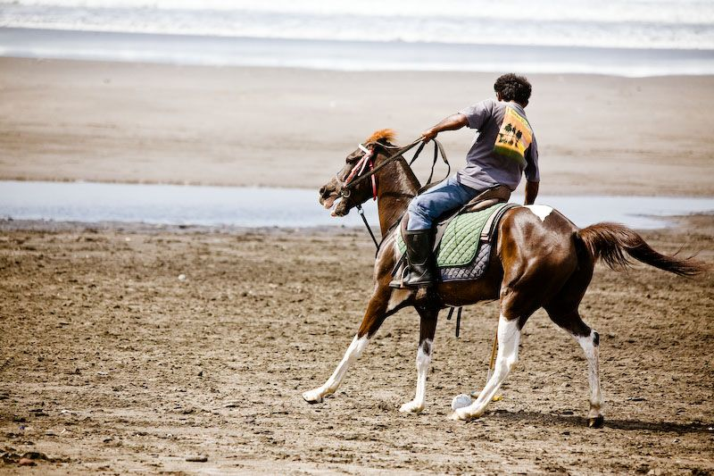 polo, beach, pantai, bali, horse, sport, riding, j