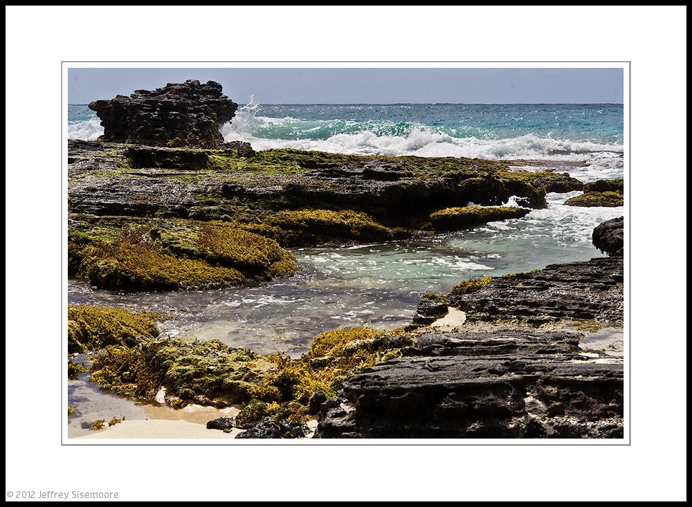 lava rock along oahu's shore