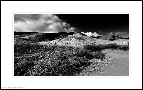 maui landscape 3