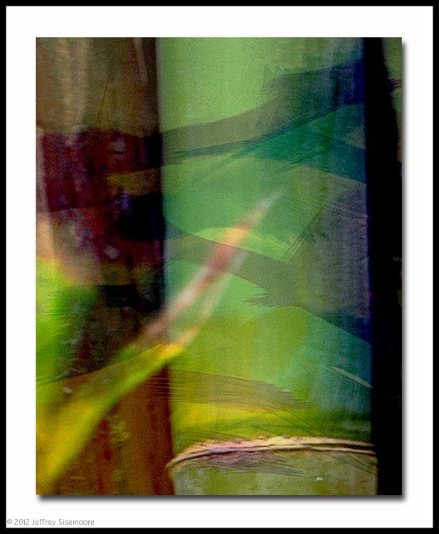 bamboo effect