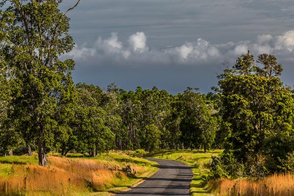 big island country road