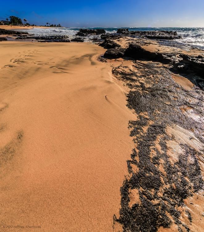 sandy beach V