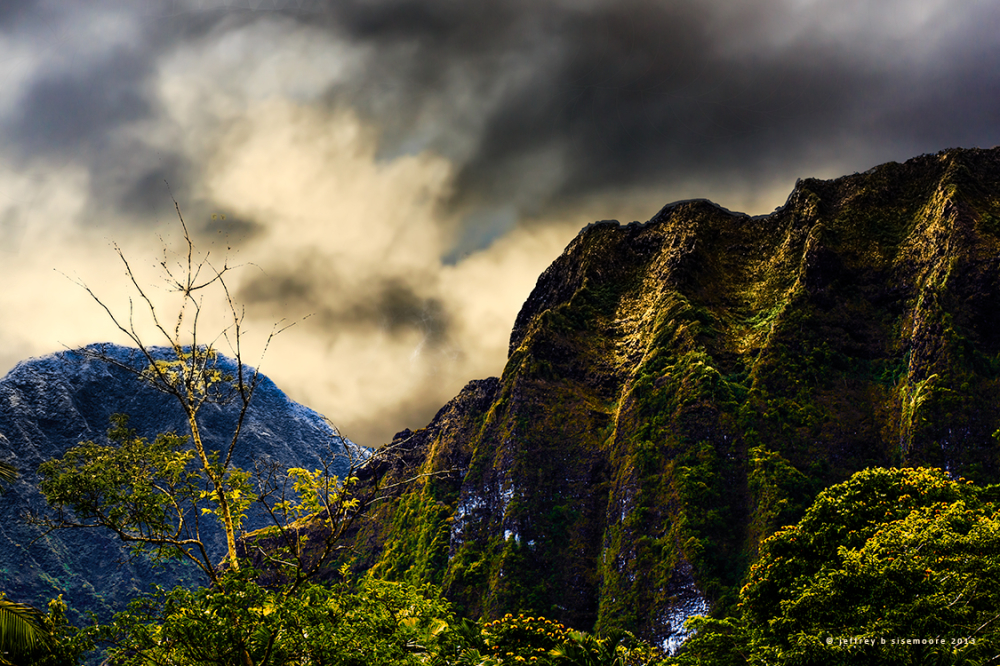 in the ko'olau mountains