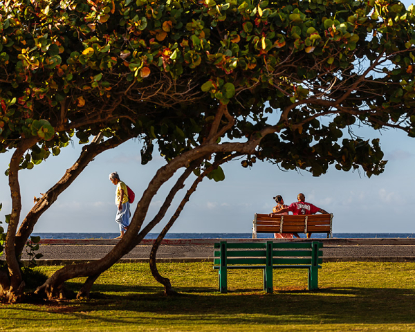 morning at the park II