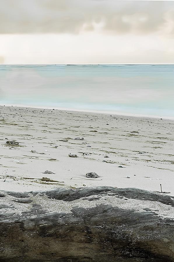ocean, sand, log