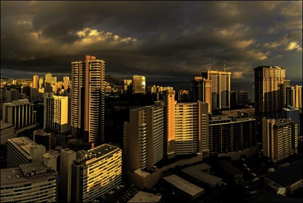 in the golden hour