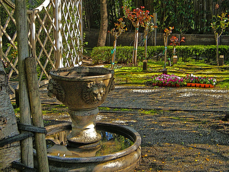 Early Spring Garden