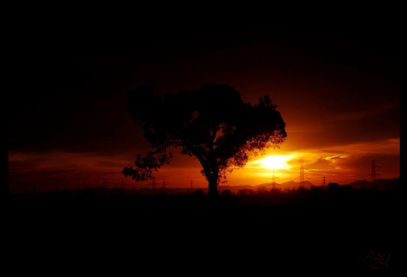 let's follow the sun