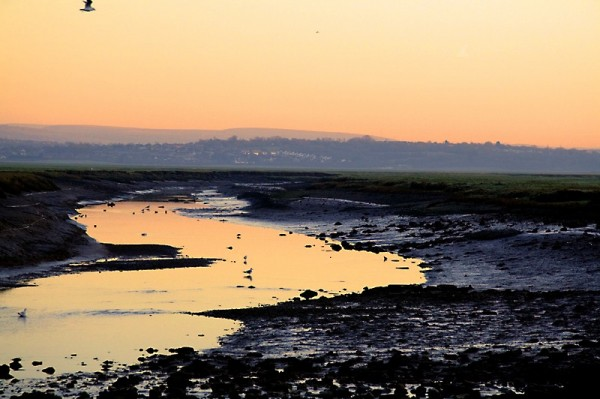 sunrise on the estuary