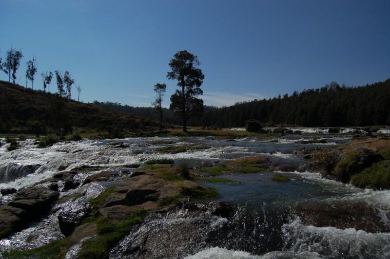 Pikkara Water Falls
