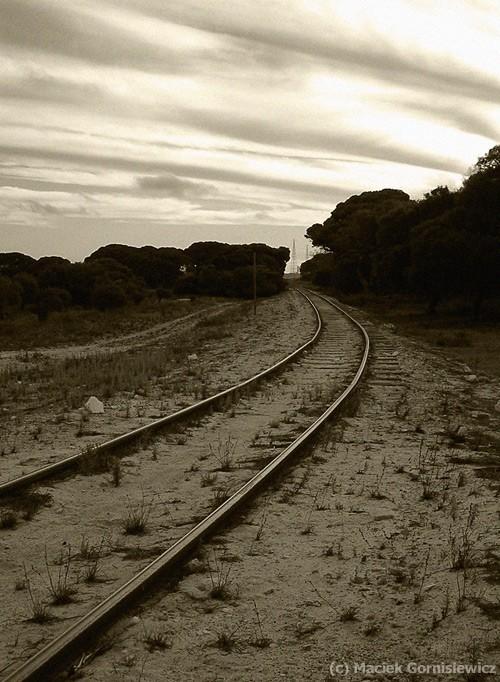 Abandoned railway tracks.