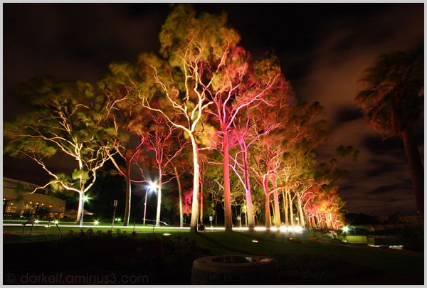 Kings Park Lights