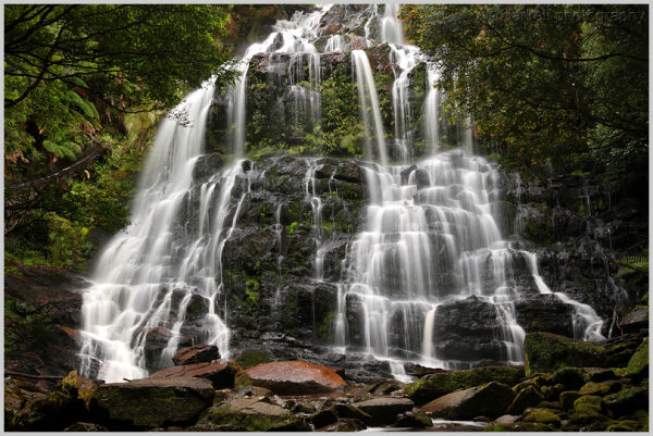 nelson falls - tasmania