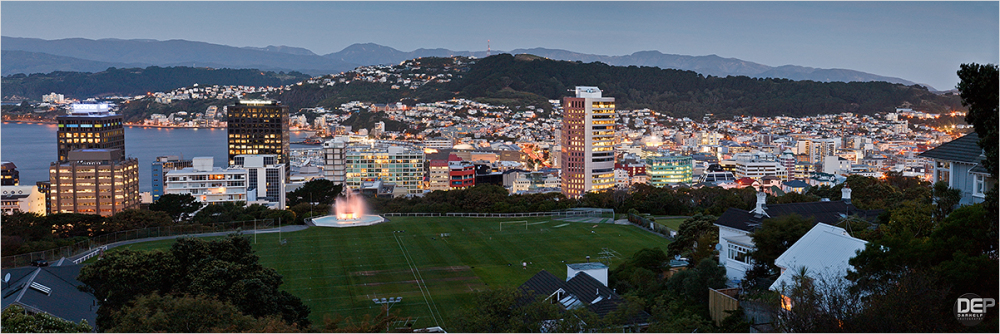 Wellington panorama