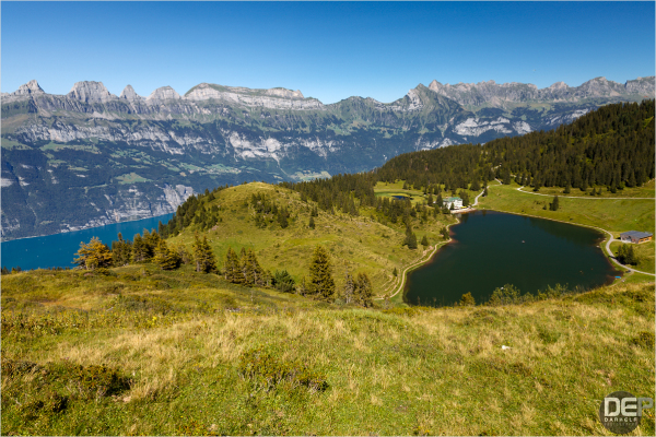 alpine summer