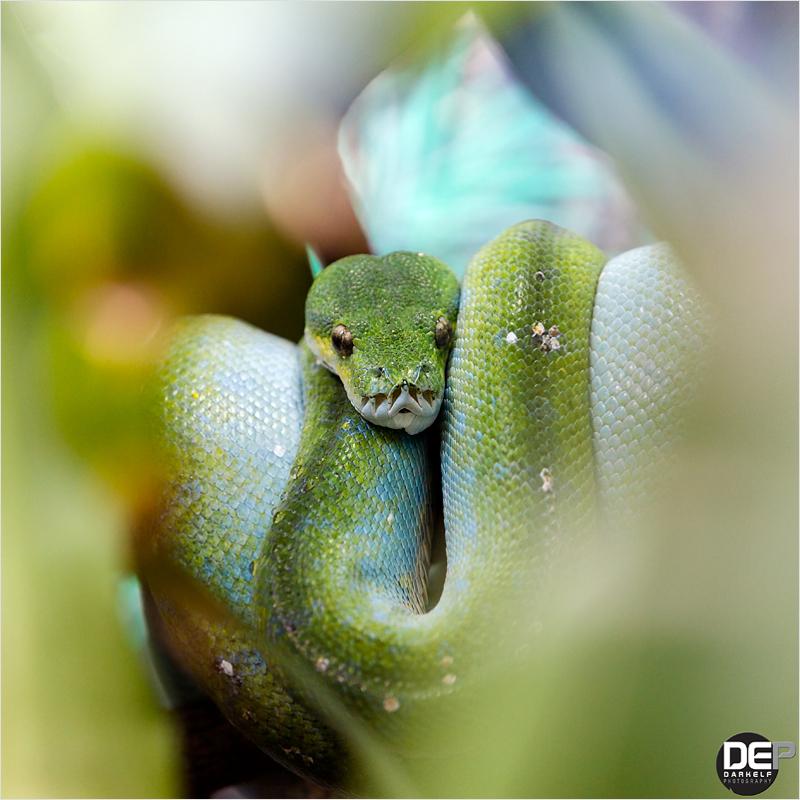 i am watching you #2