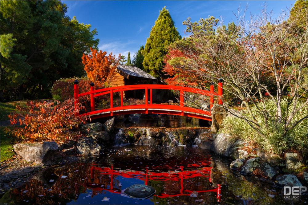 a little bit of Japan in Tasmania