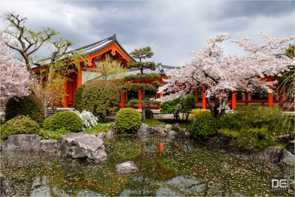 Sanjusangendo Garden