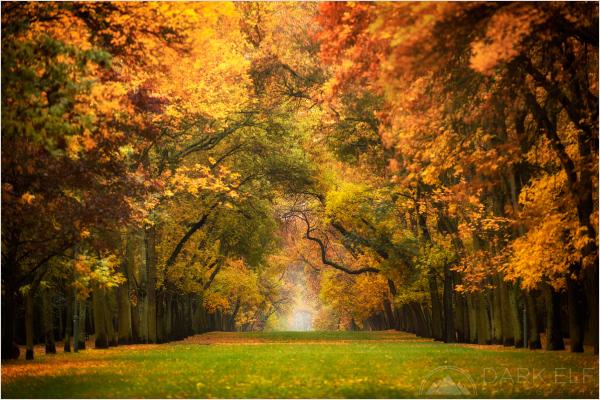 Autumn in Łódź