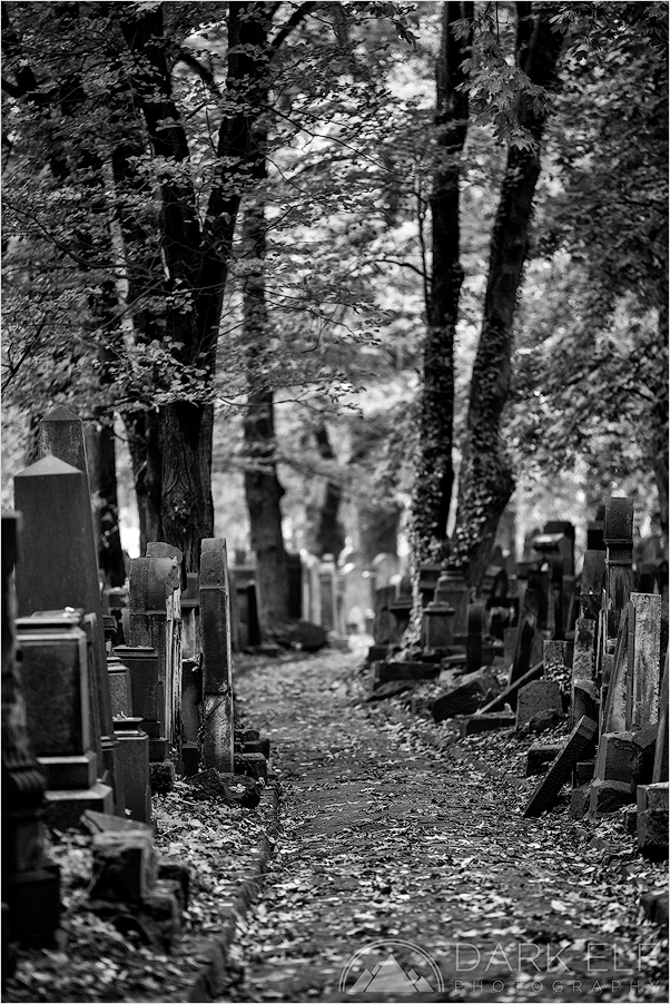 Amongst The Tombstones