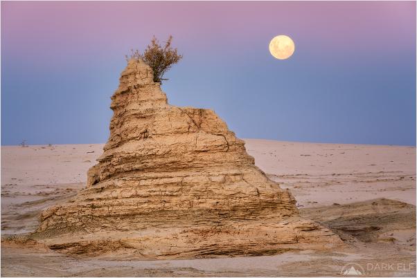 Mungo Moon