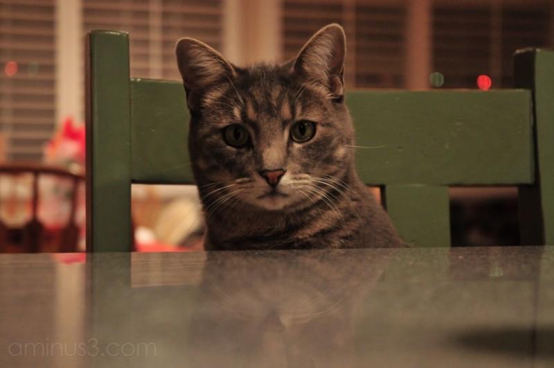 sittin at the big table..