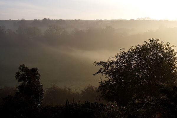 misty downs