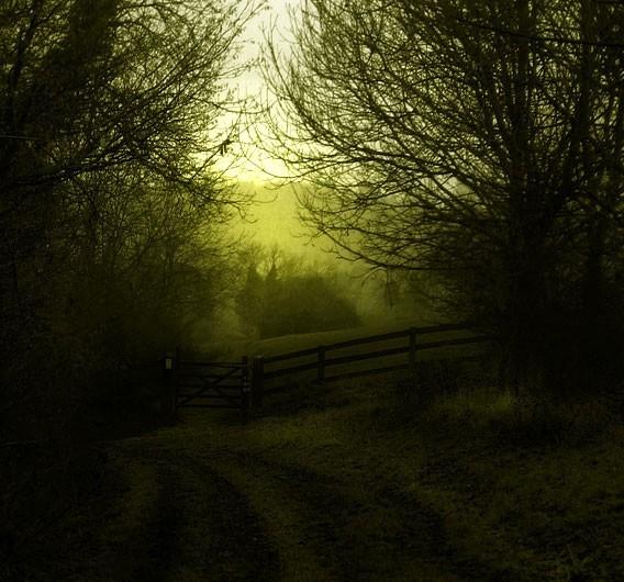 a monocrome photo of a rural landscape