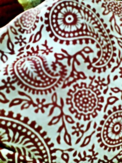 Sari Pattern (Image 35)