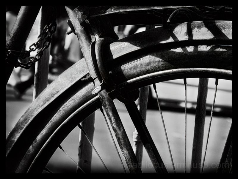 Cycle - Abstract