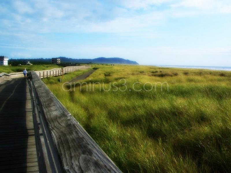 Washington state beach