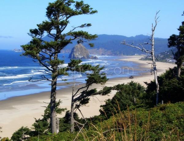View of the Oregon coast