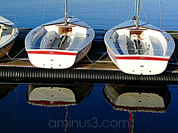 sailboats at the dock