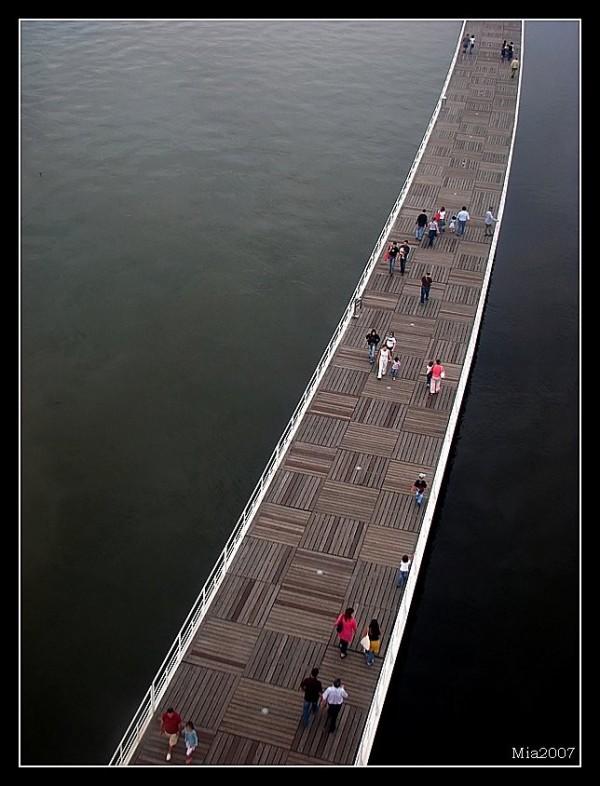 bridge of the vanities