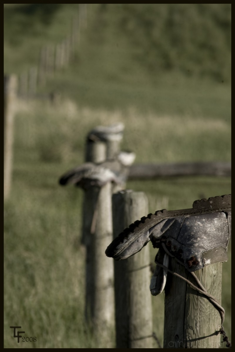 boots fence posts