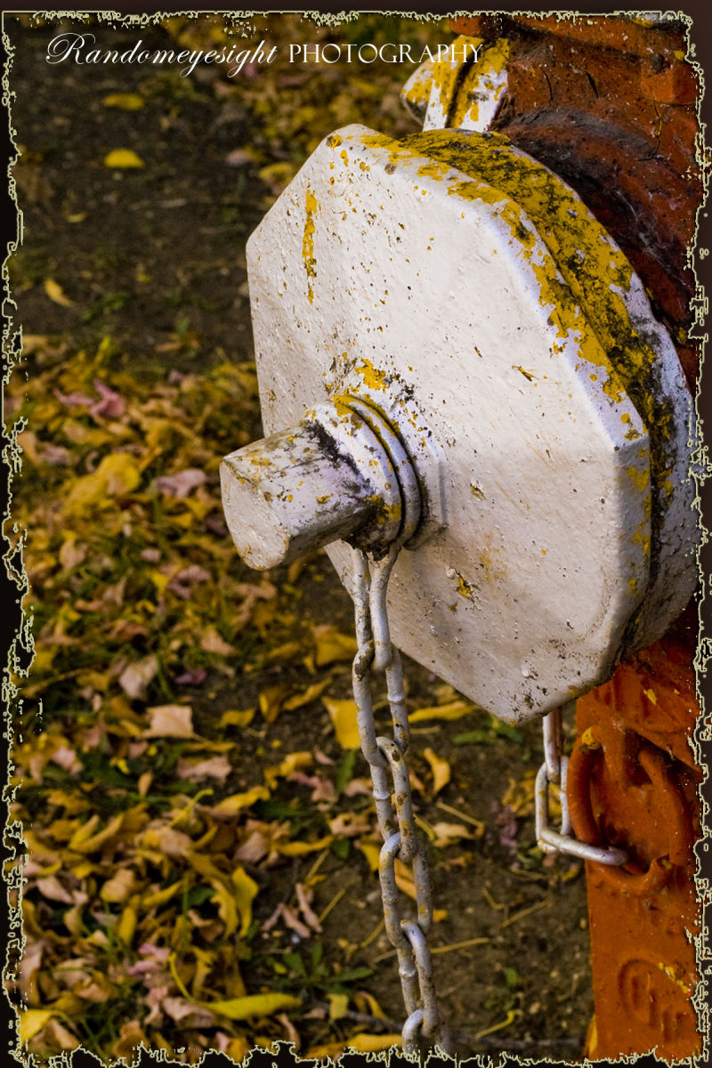 fire hydrant fall chain